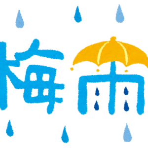 今年の梅雨入りは、、